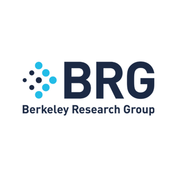 Logo da Berkeley Research Group